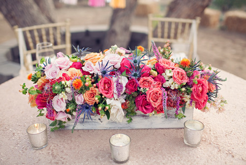 Flower Combinations For Flower Beds Flower Combinations