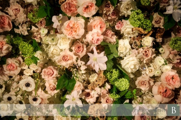 flower wall blush botanicals